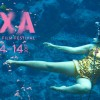 DOXA 2017 preview