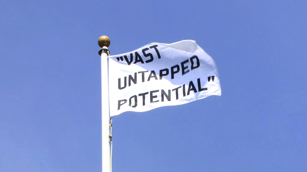 "Flag that reads ""Vast Untapped Potential"" art by Lauren Marsden"
