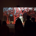 """Annie Briard's """"The Woods"""" at VIVO, Vancouver BC, 2013"""