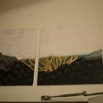 2014July24_RedGate_ArtShow_VanDocument_DSC0054