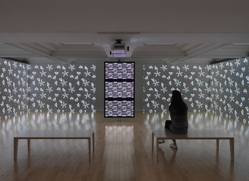 Sylvain Sailly, BRECHRIOc and DIATOM1a, 2015 (installation view), computer-generated animation. Courtesy of the artist. Photo by Rachel Topham, Vancouver Art Gallery.