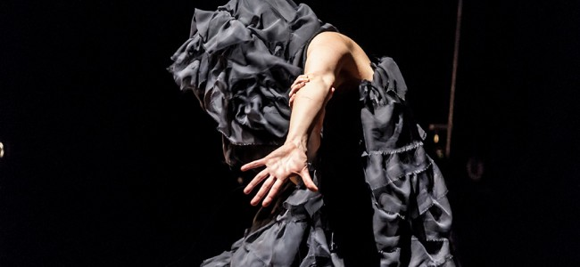 Luciana D'Anunciação's Echoes a Textural Body of Movement