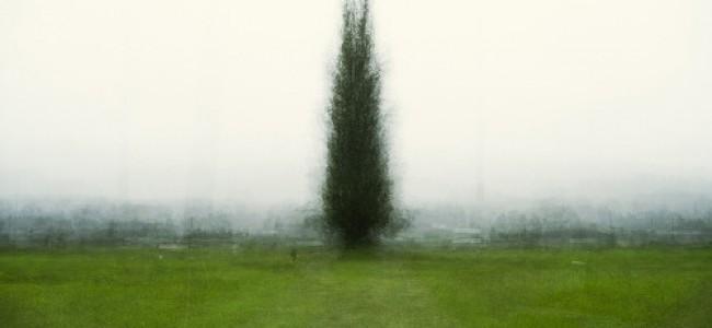 Bill Anderson // Continuum @ Winsor Gallery