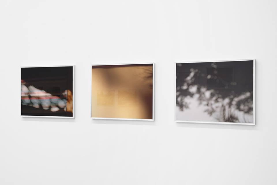 Tess Sereda's work at Locate at Gallery 295, Vancouver B.C., 2014