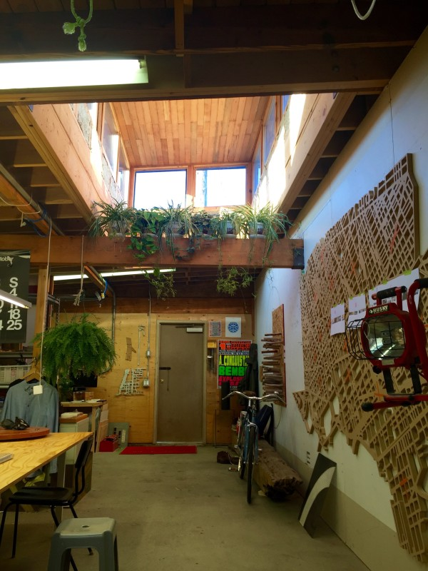 Skylights and plants over at Tinto Creative Studios. Photo by Kaitlen Arundale.