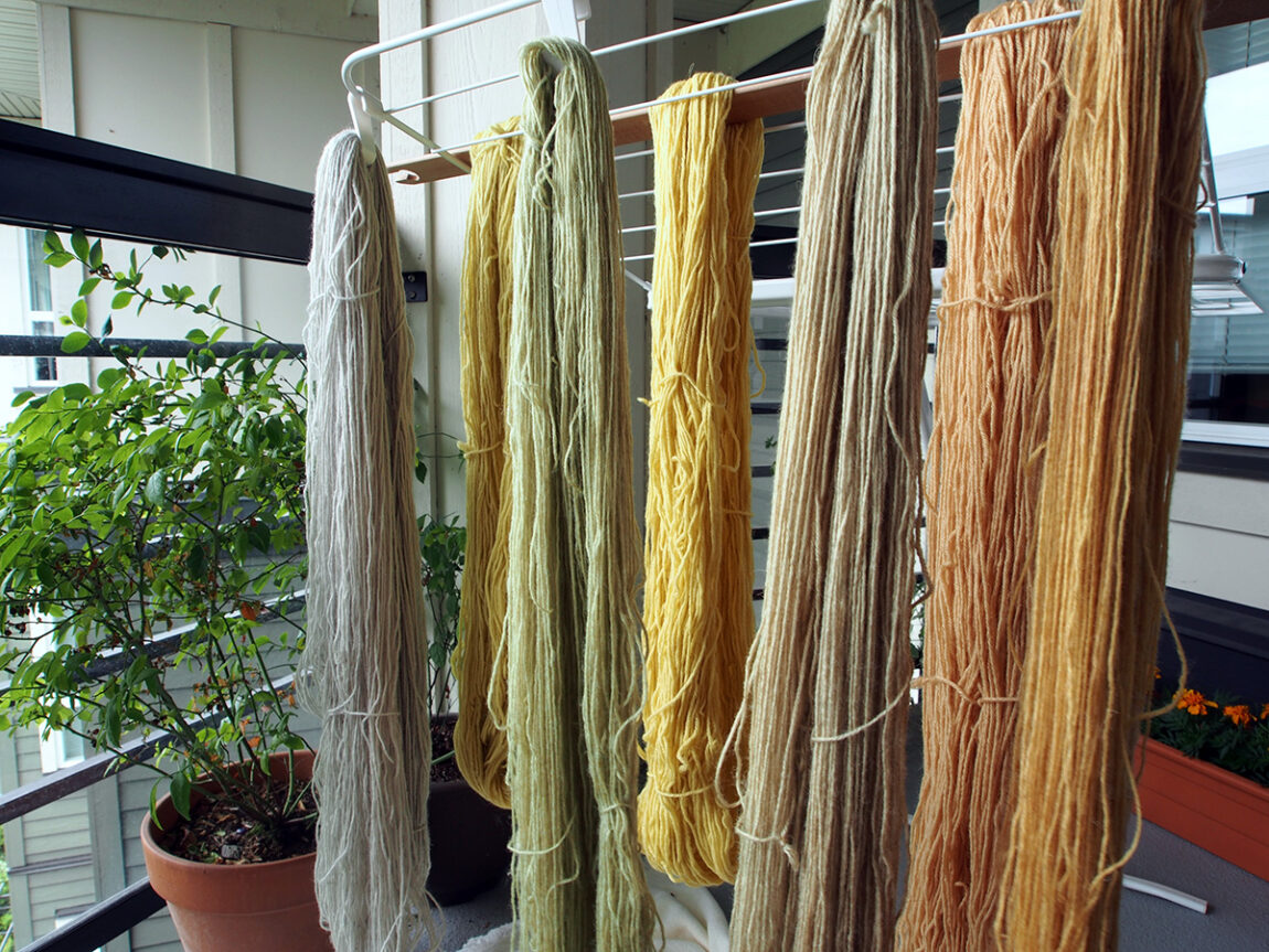 Wool dyed with cow parsley, lichen, cherry bark, and lupine. Photograph by Sasha Krieger